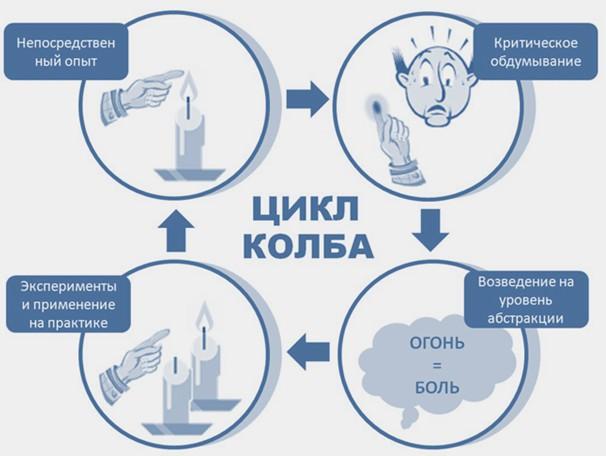Цикл Колба