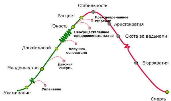 Жизненный цикл корпорации